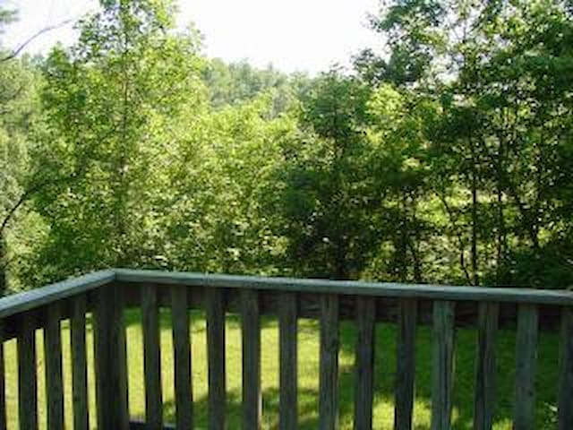 View from the deck of the Nantahala Camping Cabin #4