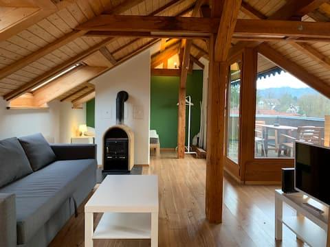 Sentrum /Wollishofen - Duplex studio, utsikt