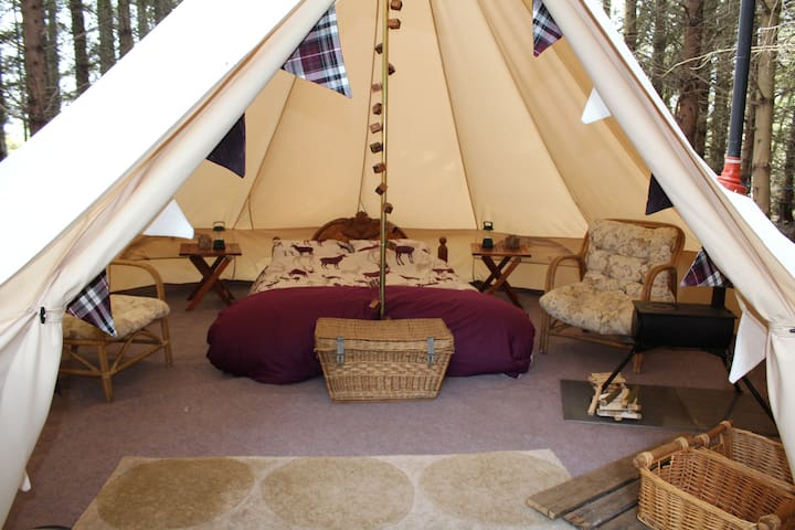 The Birch Glamping at Birkenhill Farm Fordyce