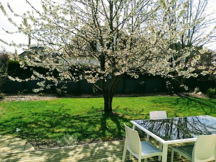 Maison avec jardin et terrasse à Caen