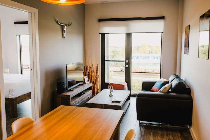 Beautiful and modern  1BR apt. in Winnipeg