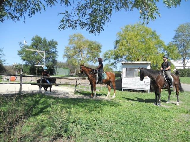 Appartamentino in Centro  Equestre  - Lazio - Aamiaismajoitus