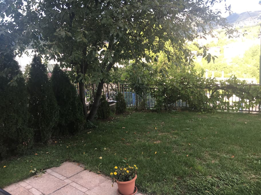 Garden from different perspective