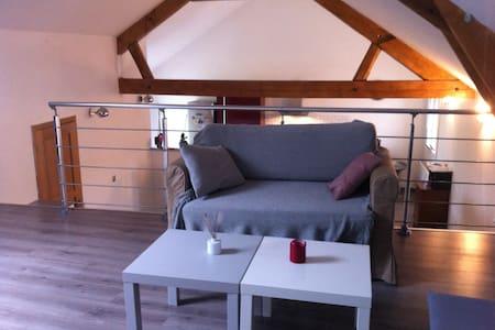 Maison de campagne cosy&spacieuse - Marcq
