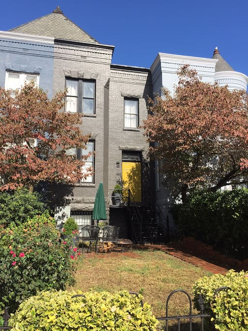 English basement apartment in charming row-house just steps from the Capitol