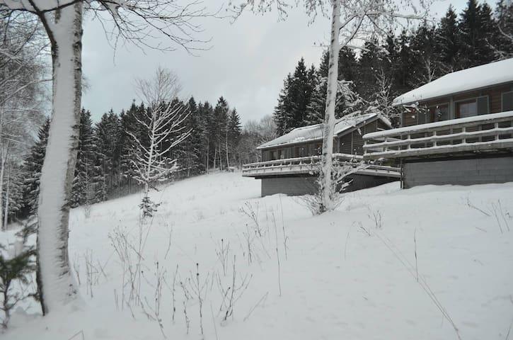 Chalet dans les Hautes Fagnes - Büllingen