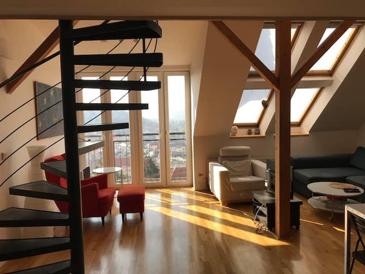 Apartment Vysehrad