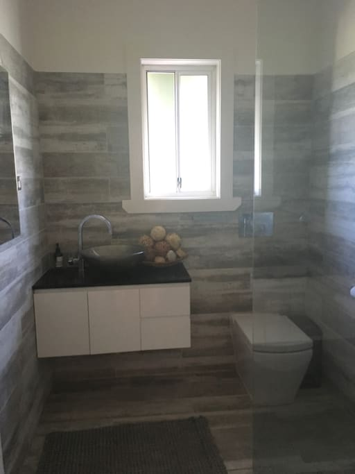 Modern bathroom with toilet vanity and shower
