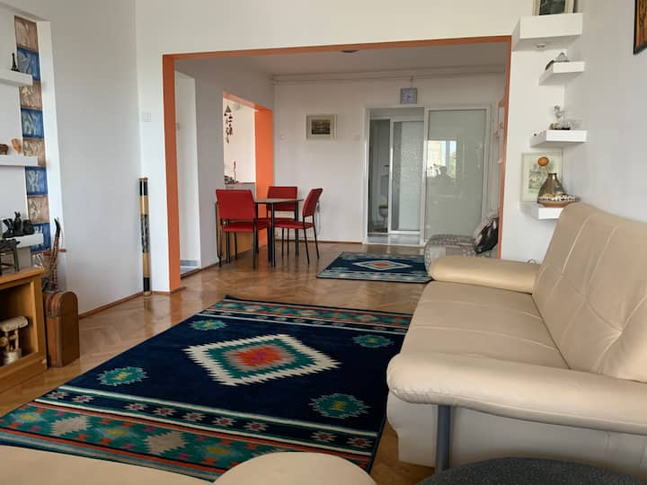 Cosy apartment downtown Bacau