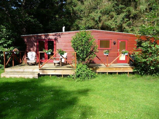 ont-haasten en ont-moeten bij zum blauen Bock - Osterwald - Гестхаус