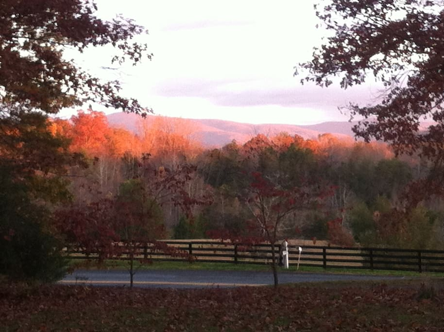 View from the driveway.
