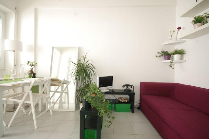 ° La Rosa Bianca ° - Roma - Apartment