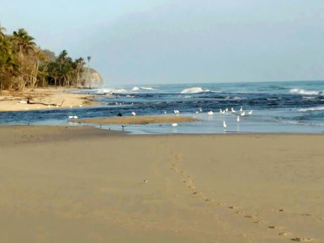 Bahía Palma Hostal Palomino Hab.Privada #1