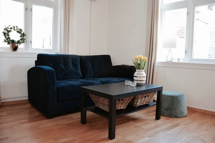 Nice 1BR Apartment - Very Central - Bergen - Lägenhet
