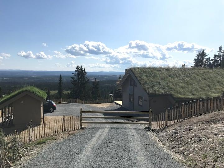 Ny stor hytte med stor hems (Valdres)