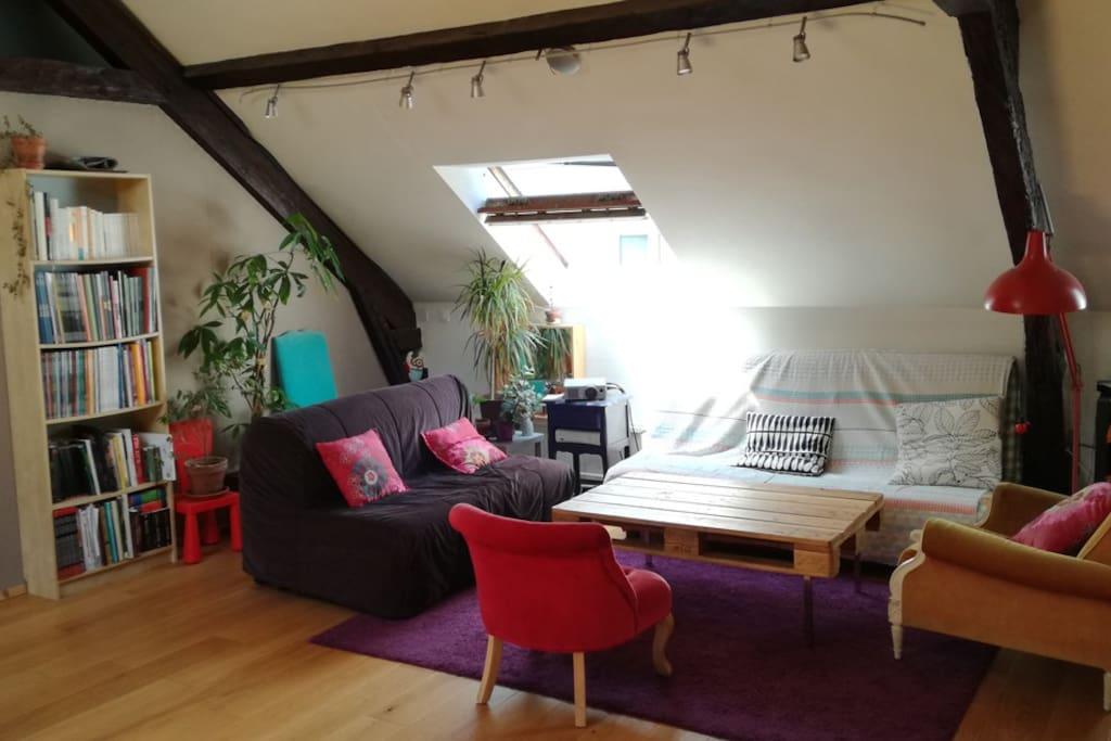 appartement type loft ultra centre appartements louer. Black Bedroom Furniture Sets. Home Design Ideas