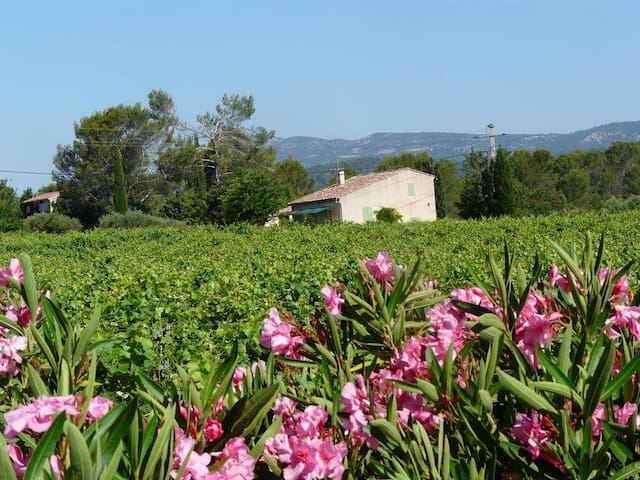LOVELY COUNTRY HOUSE - Montfort sur Argens - Hus