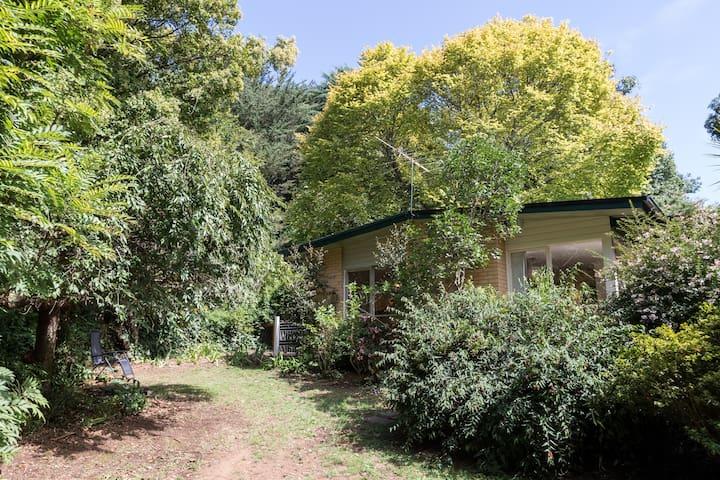 Cottage Room Sherbrooke Forest Walk - Kallista - Bed & Breakfast