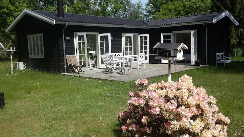 Dejligt sommerhus sydvendt terrasse