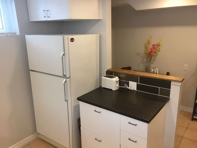 Renovated 600 sq ft light 1 br bsmt apt in house