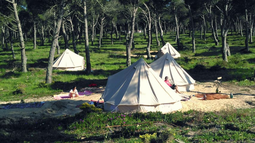Glamping near the beach, Meco. 40 m from Lisbon.