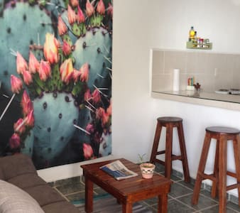 Casa Cactus - Playa del Carmen - Apartment