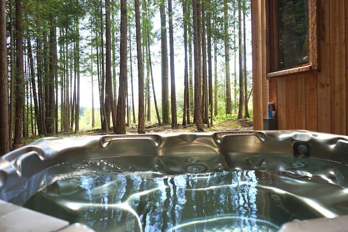 Hot tub with ocean views.