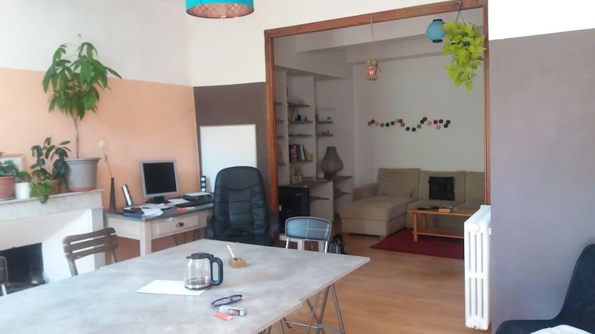 Chambre spacieuse dans appartement en centre ville - Digne-les-Bains - Appartement