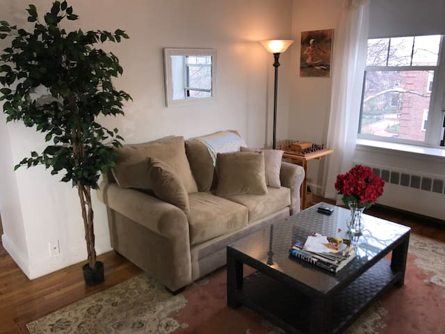 Stay in Luxury / Harvard / MIT / Central Square - Cambridge - Appartement