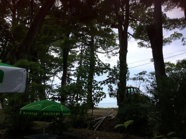 Geo Camp in Tsikhisdziri