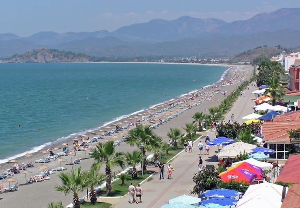Caliş long beach