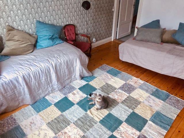 Två enkelbäddar i villa med husdjur.