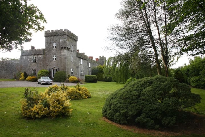 Historical Fanningstown Castle Adare in Ireland - Adare - Hrad