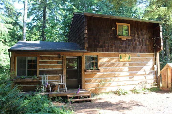 Rustic Sandy River Cabin  - Rhododendron - Cabane