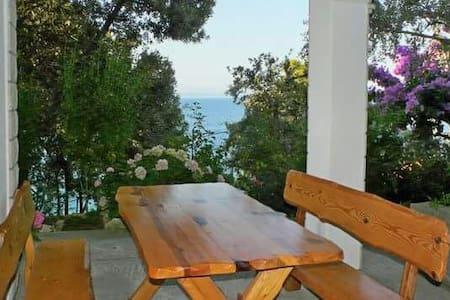 Beautiful dalmatian house - Prigradica