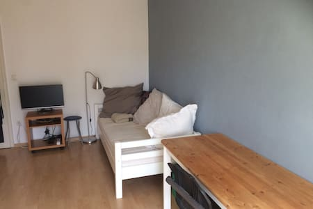 Large room in student apartment - Münih - Daire