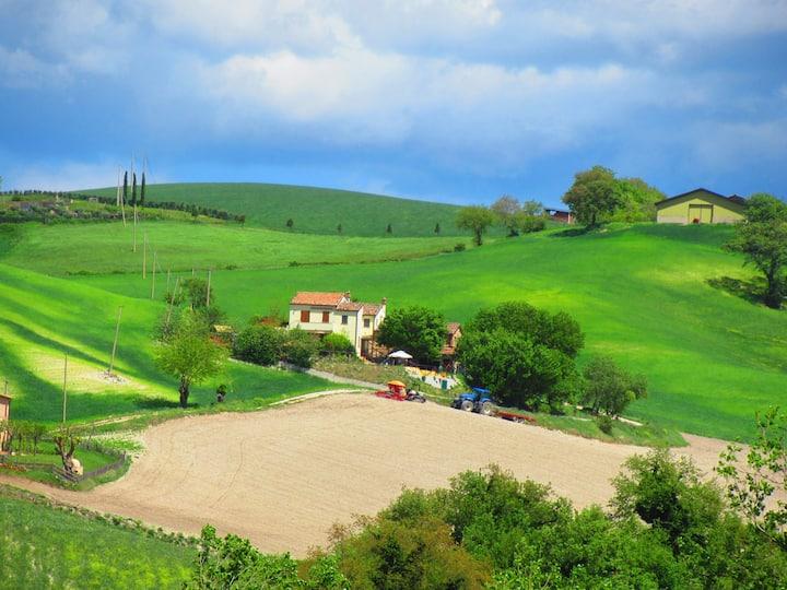 Casa dei sogni d'oro-App. San Pietro with pool