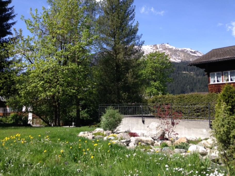 View from garden seating area in summer