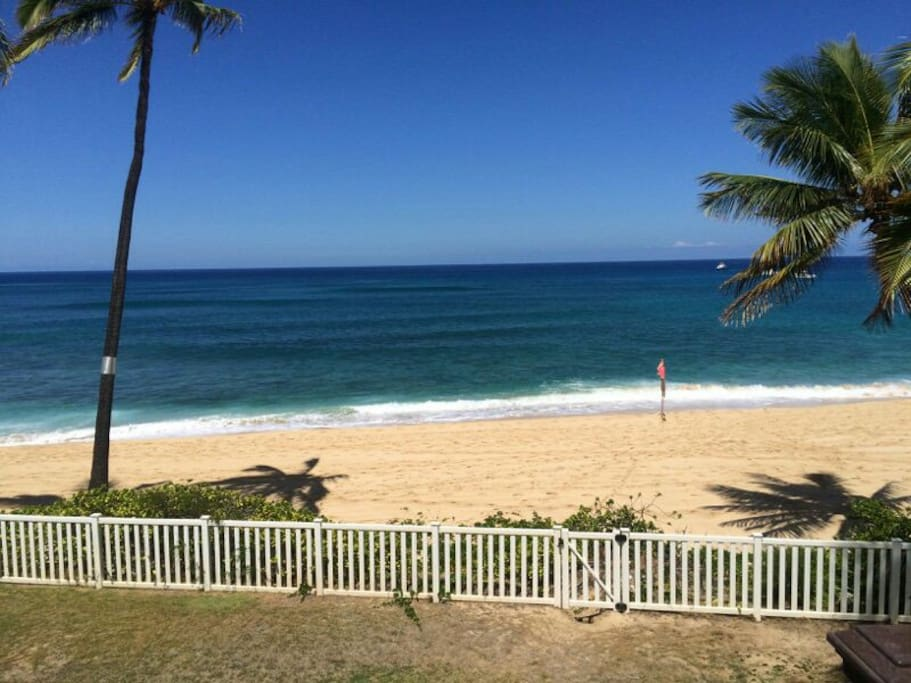 waianae dating 2018-5-27 beachfront house on scenic makaha beach with  surfing dating back to the 50's but there is  deep sea fishing out of the waianae harbor.