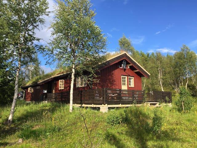 Koselig hytte til leie i Røros kommune.