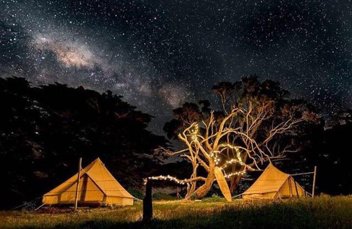 Sheltered Glamping Phillip Island - 'Adèlie' tent