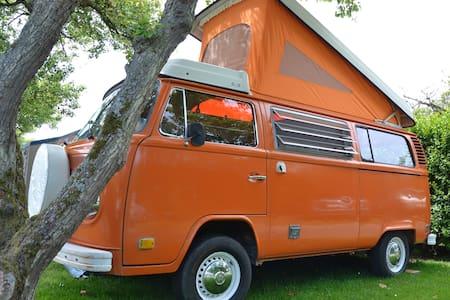 VW-bus of 1974 - Oostkapelle - Karavan/RV