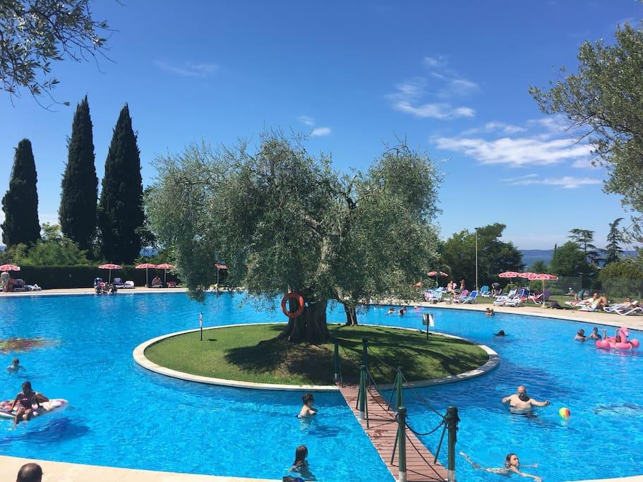 La grande piscina del residence con vista lago