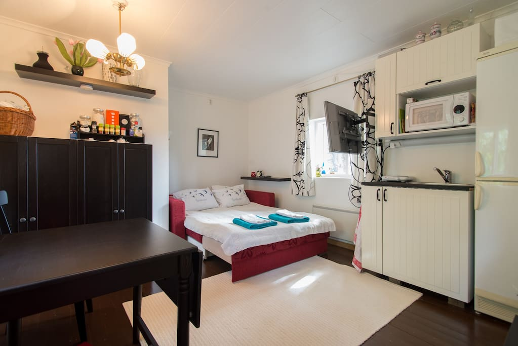 The compact room includes a comfy sofabed, kitchenette and sitting area.