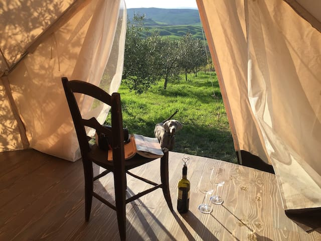 The Lazy Olive Glamping in Tuscany - Tent 1/10