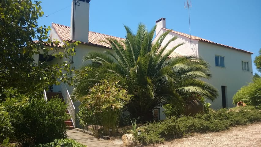 Big House in Figueiro dos Vinhos - Figueiró dos Vinhos