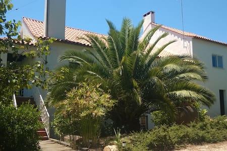 Big House in Figueiro dos Vinhos - Figueiró dos Vinhos - Dům