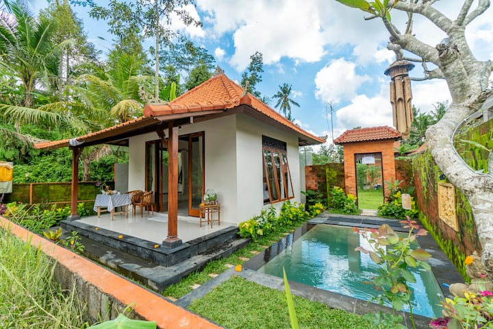 Amazing Villa with Pool and Scenic Rice Field View