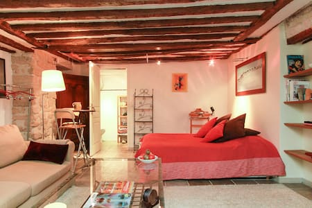 Charming studio in historical site