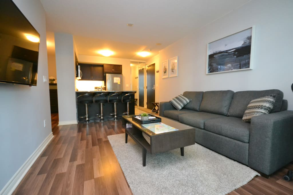 Spacious One Bedroom Downtown Condo Apartments For Rent In Toronto Ontario Canada
